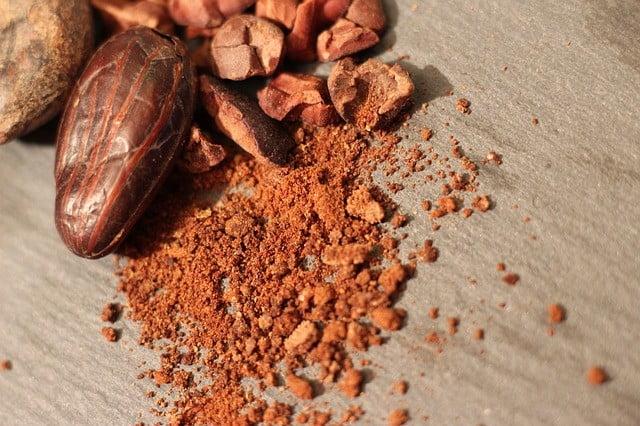 Aliments riches en fibres : Poudre de cacao