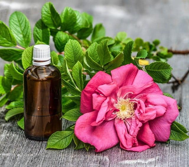 Photo of Huile d'arbre à thé contre les verrues génitales : Un remède Miraculeux !