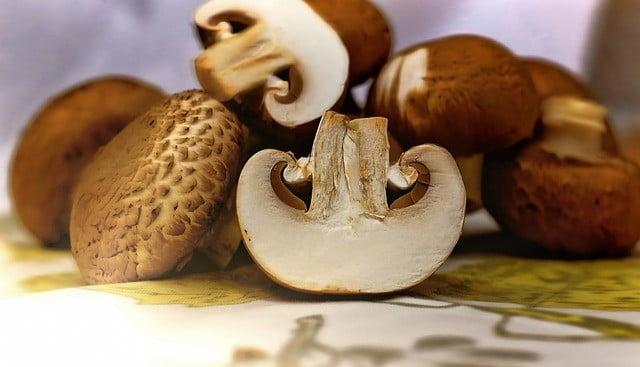 Les champignons pour lutter contre la grippe