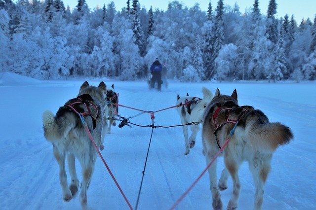 Vacances en famille: Finlande